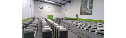 CANON used copiers guaranteed